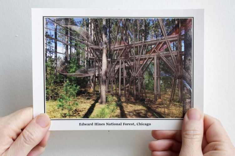 Edward Hines National Forest Postcard, 2017. Image sources: Wisconsin Department of Natural Resources Nursery, mature red pine stand, Hayward, WI by Sara Black.  3D model of timber trellis structure designed for Edward Hines National Forest by Charlie Vinz.